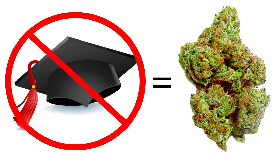 Can you break into the cannabis industry without a college degree, you bet!